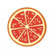 Stock Vector: Grapefruit citrus fruit