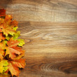 Yellow wet autumn leaves on the background a dark old wood — Stock Photo #12825555