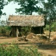 Hill-Tribe Hut — Foto Stock
