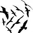 Seagull vector silhouettes illustration, set of ten — Stock Vector