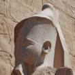 Head of a statue — Stock Photo #8849183