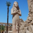Huge statue in egypt — Stock Photo #9474470