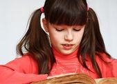 阅读的书籍 — 图库照片