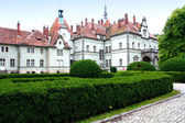 Castle in Transcarpathia. — Stock Photo