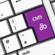 Royalty-Free Stock Photo: Computer keyboard CMS