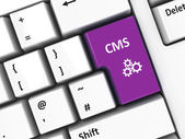 Computer keyboard CMS — Stock Photo