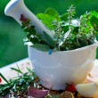 Fresh herbs in the mortar — Stock Photo #13774985