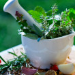 Fresh herbs in the mortar - Stock Photo