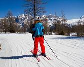 Skiing — Foto Stock
