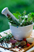 Fresh herbs in the mortar — Stock Photo