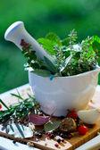 Fresh herbs in the mortar — Stock Photo
