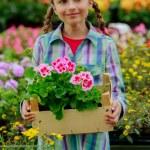 Lovely girl holding flowers in garden center. — Stock Photo #28094957