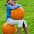 Harvest of pumpkins, autumn in the garden — Stock Photo
