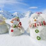 Winter, snow, sun and fun, Christmas - happy snowman friends — Stock Photo