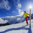 Stock Photo: Skier, skiing, winter sport - portrait of female skier