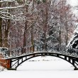 Winter scene - Old bridge in winter snowy park — Stockfoto
