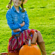 Stock Photo: Harvest of pumpkins, autumn in the garden