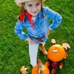 Harvest of pumpkin — Stock Photo