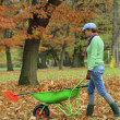 Stock Photo: Autumn - womraking autumn leaves in garden
