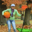Stock Photo: Autumn in the garden - harvest of pumpkins