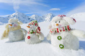 Winter, snow, sun and fun, Christmas - happy snowman friends — Stock Photo
