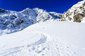 Ski, winter sport, winter mountains - freeride in fresh powder — Stock Photo