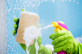 Cleaning window pane with spray detergent — Stock Photo