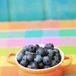 Summer fruits - fresh blueberries from garden — Stock Photo