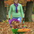 Autumn - woman raking autumn leaves in the garden — Stock Photo