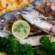 Fish - grilled sea bream with baked potatoes — Stock Photo #32120979