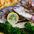 Fish - grilled sea bream with baked potatoes — Stock Photo