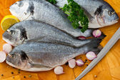 Seafood, fish - fresh sea dorada in cuisine — Stock Photo