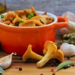 Chanterelle mushrooms cooked in a pan — Stock Photo