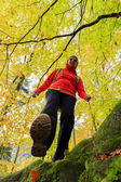 Herbst trek - frau auf bergwanderung — Foto de Stock