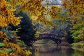 Outono - ponte velha no parque enevoado do outono — Fotografia Stock