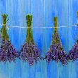 Lavender herbs drying on the wooden barn in the garden — Stock Photo #46805427
