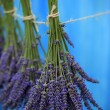 Lavender herbs drying on the wooden barn in the garden — Stock Photo #46806081