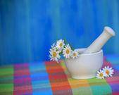 洋甘菊草药在砂浆、 替代医学、 健康 cosme — 图库照片