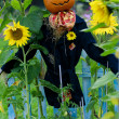 Scarecrow in the garden — Stock Photo #46828593