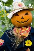 Scarecrow in the garden — Stock Photo