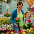 Planting, garden flowers - family shopping plants and flowers in garden center — Stock Photo #47079207