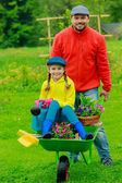 Gardening, planting - girl in barrow helping father — Stock Photo