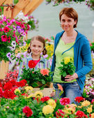 Planting, garden flowers - family shopping plants and flowers in garden center — Zdjęcie stockowe