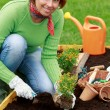 Gardening, planting - woman planting flowers in the garden — Stock Photo #47091593