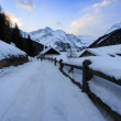 Winter vacations - winter scenery in the Alpine village — Stock Photo #47440923