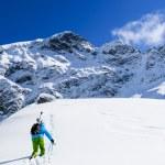Skiing, Skier, Freeride in fresh powder snow — Stock Photo #47442233