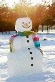 Invierno, nieve, muñeco de nieve - alegría de invierno — Foto de Stock