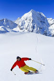 Ski, Skier, Freeride in fresh powder snow - man skiing downhill — Stock Photo