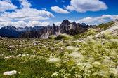 """Dolomites, Italy - Tre Cime di Lavaredo """" Drei Zinnen """" — Stock Photo"""