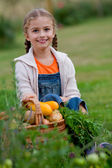 Vegetable garden, child - lovely girl with the basket of ecological harvests — Photo